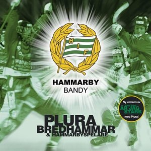 Image for 'Hammarby Bandy'
