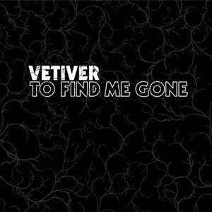 Immagine per 'To Find Me Gone'
