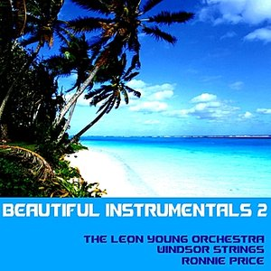 Image for 'Beautiful Instrumentals, Vol. 2'