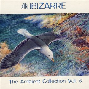 Image for 'Ambient Collection Vol. 6'