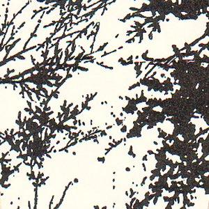 Image for 'Harrisburg'