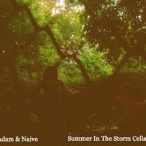 Image for 'Summer In The Storm Cellar'