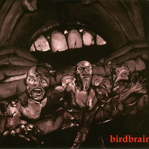 Image for 'Birdbrains'