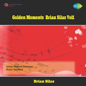 Image for 'Golden Moments Brian Silas Vol1'