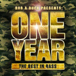 Image for 'Rub a Duck presents One Year the Best in Bass'