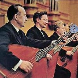 Image for 'Balalaika-Ensemble Wolga'