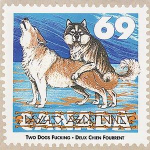 Imagem de 'Two Dogs Fucking - Deux Chiens Fourrent'