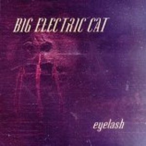 Image for 'Big Electric Cat'