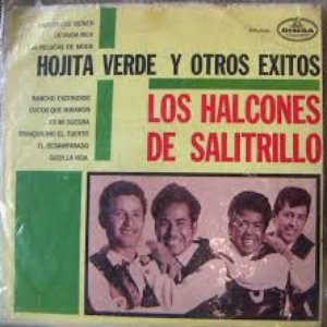 Image for 'Los Halcones De Salitrillo'