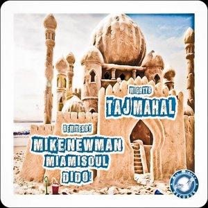 Image for 'Taj Mahal - The Remixes'