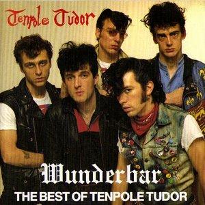 Bild für 'Wunderbar - The Best Of Tenpole Tudor'