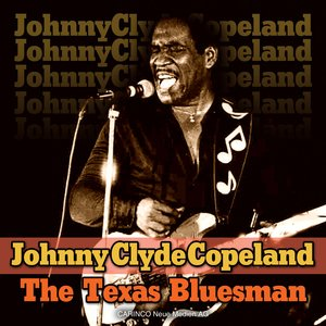 Image pour 'The Texas Bluesman'