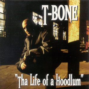 Image for 'Tha Life of a Hoodlum'