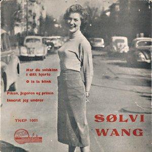 Image for 'Sølvi Wang'