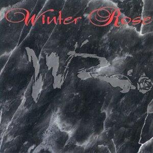 Immagine per 'Winter Rose'