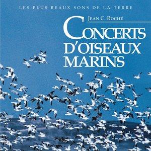 Image for 'Concerts d'oiseaux marins'