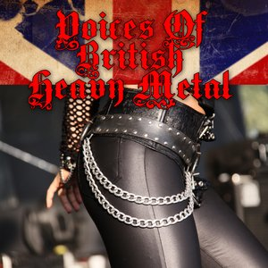 Image pour 'Voices Of British Heavy Metal'
