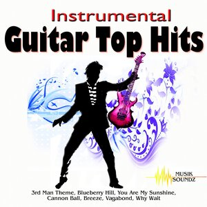 Image for 'Instrumental Guitar Top Hits'