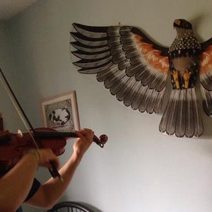 Bild för 'Sizzlebird'