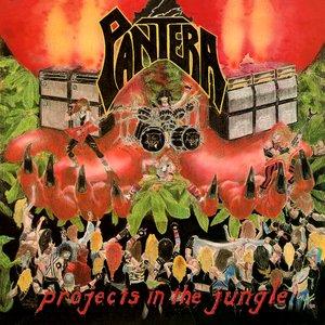 Bild för 'Projects in the Jungle'