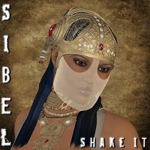 Image for 'Shake It'