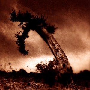 Image for 'Jackknifed & Slaughtered'