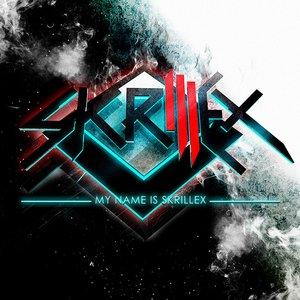 Immagine per 'My Name Is Skrillex'