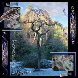 Image for 'Forest Light'