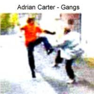 Image for 'Gangs'