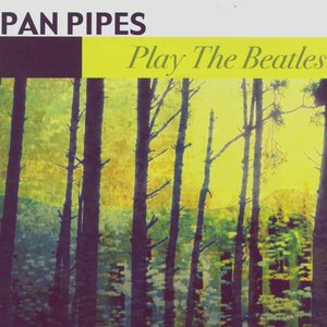 Image for 'Play The Beatles'