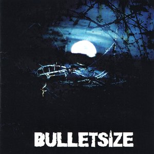 Image for 'Bulletsize'