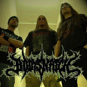 Bild für 'Bodysnatch'