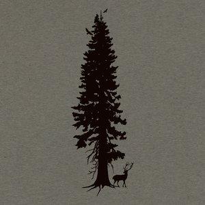 Image for 'Cedar Spirits'