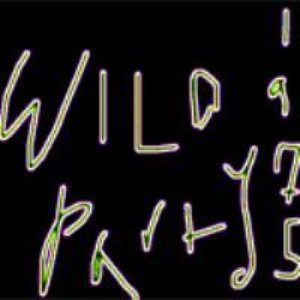 Image for 'Wild Party'