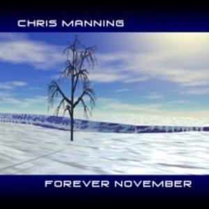 Immagine per 'Forever November'