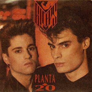 Image for 'planta 20'