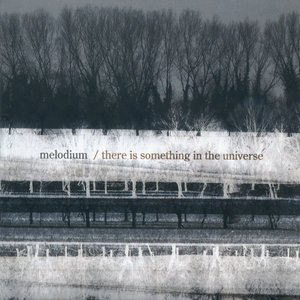Immagine per 'There Is Something in the Universe'