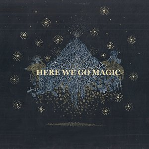Immagine per 'Here We Go Magic'