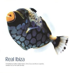 Image for 'Real Ibiza (disc 1)'
