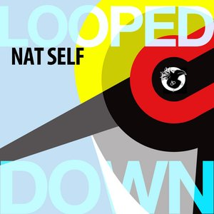 Image for 'Looped Down'
