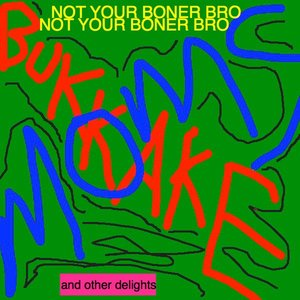 Image for 'Not Your Boner Bro and Other Delights'