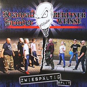 Image for 'Zwiespältig [Split]'