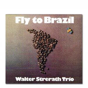 Image for 'Walter Strerath Trio'