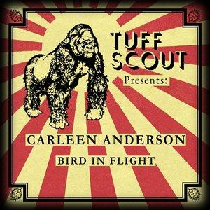 Bild für 'Bird In Flight'