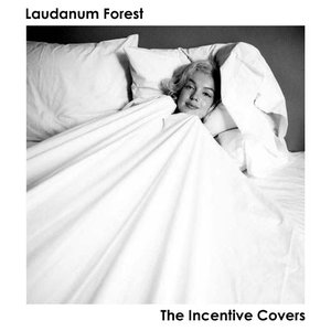 Image for 'The Incentive Covers'