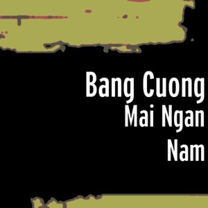 Image for 'Mai Ngan Nam'