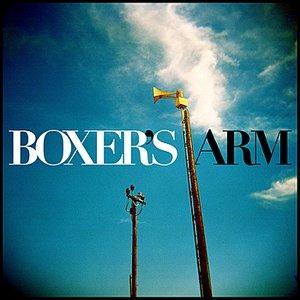 Immagine per 'Boxer's Arm'