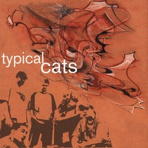 Image for 'Typical Cats'