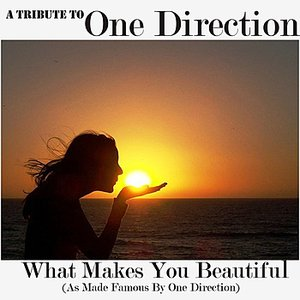 Image for 'A Tribute To One Direction (What Makes You Beautiful Cover)'