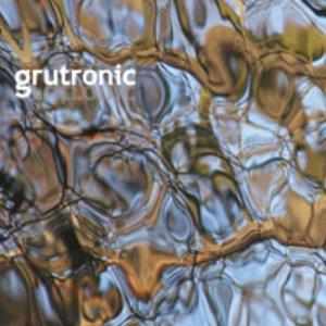 Image for 'Live Grutronic'